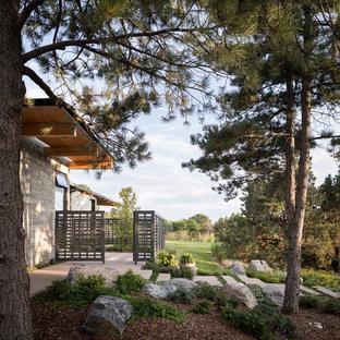Moderner Vorgarten mit Gartenweg in Denver