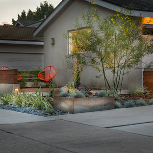 Photo of a mid-sized modern drought-tolerant and partial sun front yard concrete paver landscaping in Los Angeles for summer.