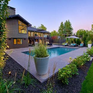 Immagine di un giardino minimalista di medie dimensioni e dietro casa