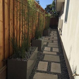 Imagen de jardín de secano, moderno, pequeño, en patio trasero, con exposición parcial al sol