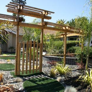 Inspiration för stora exotiska trädgårdar som tål torka och framför huset, med grus