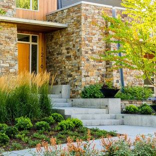 Inspiration för mellanstora moderna formella trädgårdar i full sol framför huset på hösten, med en trädgårdsgång och naturstensplattor