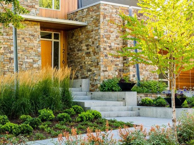 Modern Garden by SCJ Studio Landscape Architecture