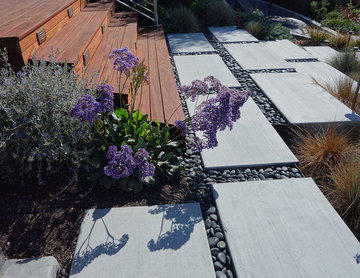Modern Water-Side Landscape Remodel and Lawn Replacement - Backyard, Novato, CA