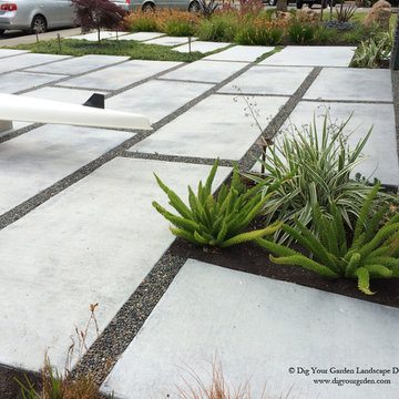 Modern Water-Side Landscape Remodel - Front Lawn Replaced, Novato, CA
