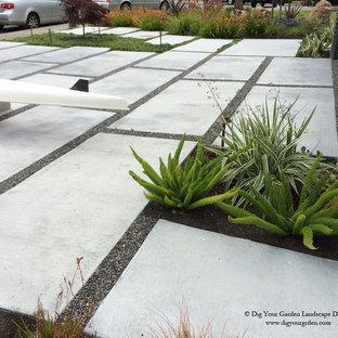 Esempio di un grande vialetto minimal esposto in pieno sole davanti casa in inverno con un ingresso o sentiero e pavimentazioni in cemento