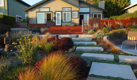 Milorganite, Purely Organic or Ringer Lawn restoration?
