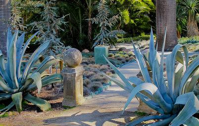Monochromatic Garden Magic Done 7 Ways