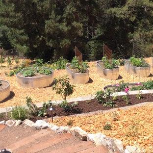 Esempio di un ampio giardino stile shabby esposto in pieno sole dietro casa in primavera con pacciame