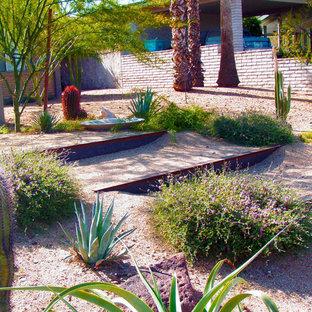 Moderner Garten hinter dem Haus mit Wüstengarten in Phoenix