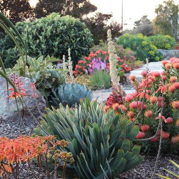Morro Bay Mediterranean Garden at Dusk
