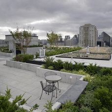 Modern Landscape by Kenneth Philp Landscape Architects
