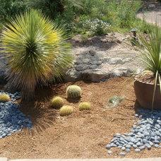 Mediterranean Landscape by Leveridge Landscape Design