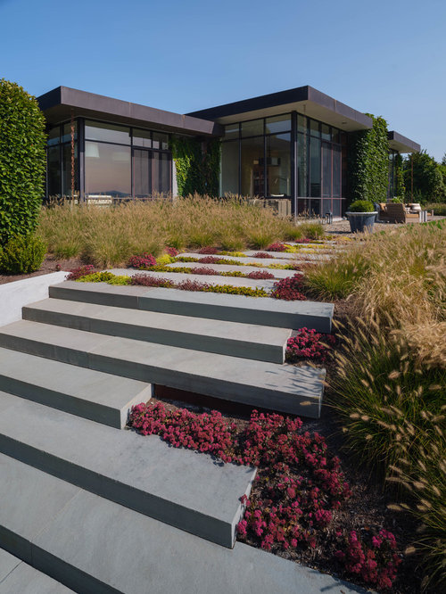 This is an example of a midcentury modern landscaping in Boston. Midcentury Modern Landscaping Ideas   Design Photos   Houzz