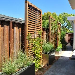 Inspiration pour un jardin latéral design.