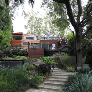 This is an example of a modern hillside gravel landscaping in Los Angeles.