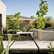 Contemporary Landscape by MTLA- Mark Tessier Landscape Architecture