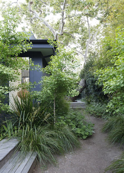 Midcentury Landscape by MTLA- Mark Tessier Landscape Architecture