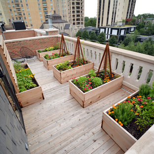 Photo of a mid-sized modern full sun rooftop landscaping in Chicago with decking.