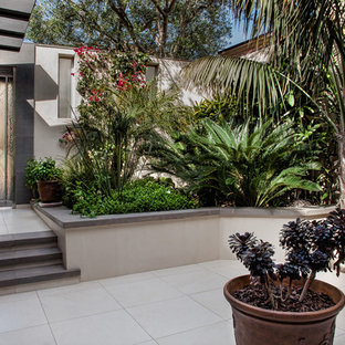 This Is An Example Of A Large Tropical Partial Sun Courtyard Concrete Paver Formal Garden In