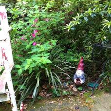 Eclectic Landscape My gnome