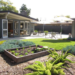 Inspiration for a mid-century modern full sun backyard landscaping in Orange County.