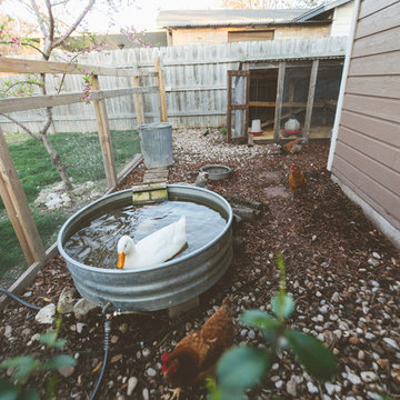 My Houzz: An Urban Farm and Animal Haven in the City