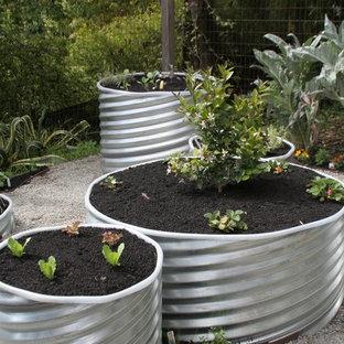 Eklektisk inredning av en trädgård, med en köksträdgård