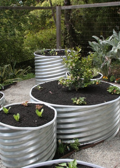 Hochbeet Anlegen Die Besten Tipps Zum Befullen Und Bepflanzen
