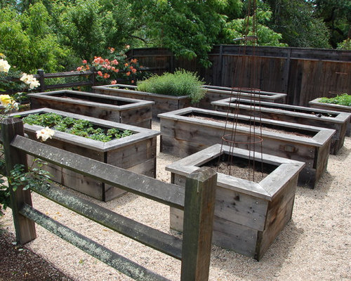 Vegetable Gardening Boxes Home Design Ideas Pictures