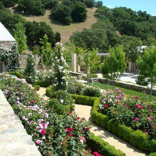 Photo of a mid-sized mediterranean full sun backyard formal garden in San Francisco for summer.