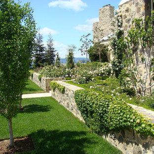 Design ideas for a mediterranean landscaping in San Francisco for summer.