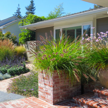 Napa Valley Water-wise Landscape