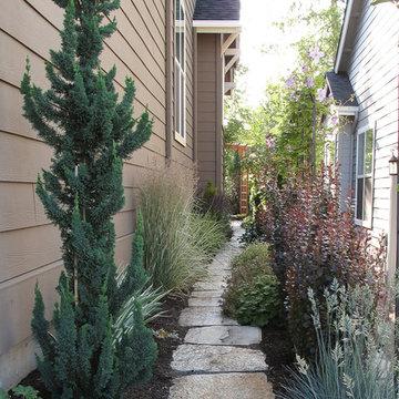 narrow trees for narrow gardens