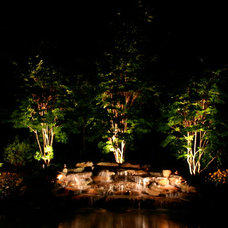 Traditional Landscape by Outdoor Lighting Perspectives of Nashville