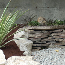 Contemporary Landscape by Native Root Designs