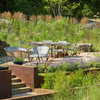 See 3 Gardens Beautifully Transformed by Native Plants