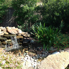 Eclectic Landscape by Roundtree Landscaping, Inc
