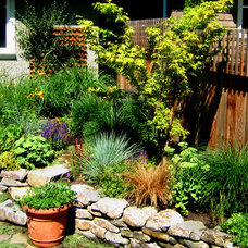 Traditional Landscape by Swick's Organic Landscaping