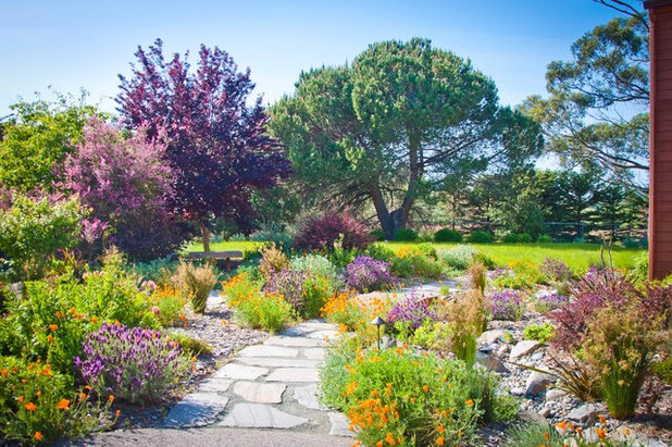 Mediterraneo Giardino by Sage Ecological Landscapes