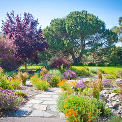 mediterranean landscape by Sage Ecological Landscapes and Nursery