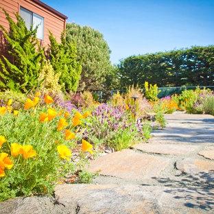 Design ideas for a mediterranean full sun stone landscaping in San Luis Obispo.