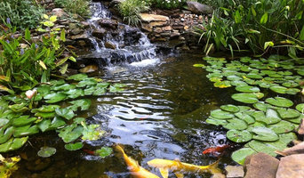 Natural Pond with Koi Fish in Loganville, GA
