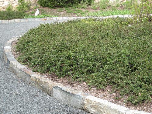 Natural stone edging design ideas remodel pictures houzz - Natural garden edging ideas ...