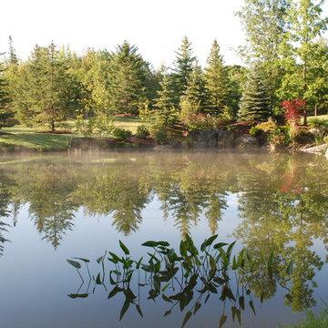 Natural Swim Pond