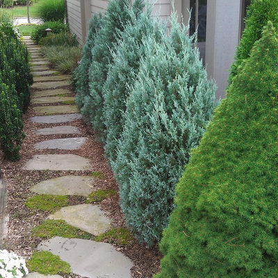 Inspiration for a traditional side yard stone landscaping in New York.