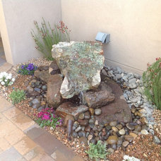 Traditional Landscape by Jackie Hall Designs