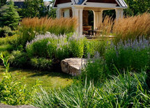 Lovely grouping.  What grasses/flowering plants are used?  Tks.