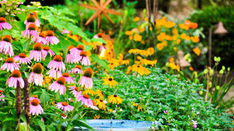 Naturescapes Landscaping Photos