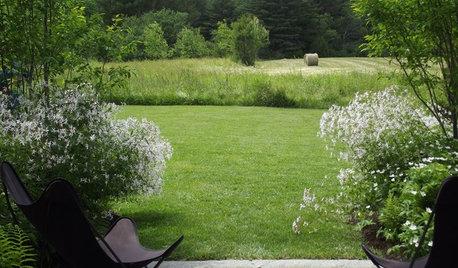 Ленивый сад: 17 советов, которые сэкономят вам силы
